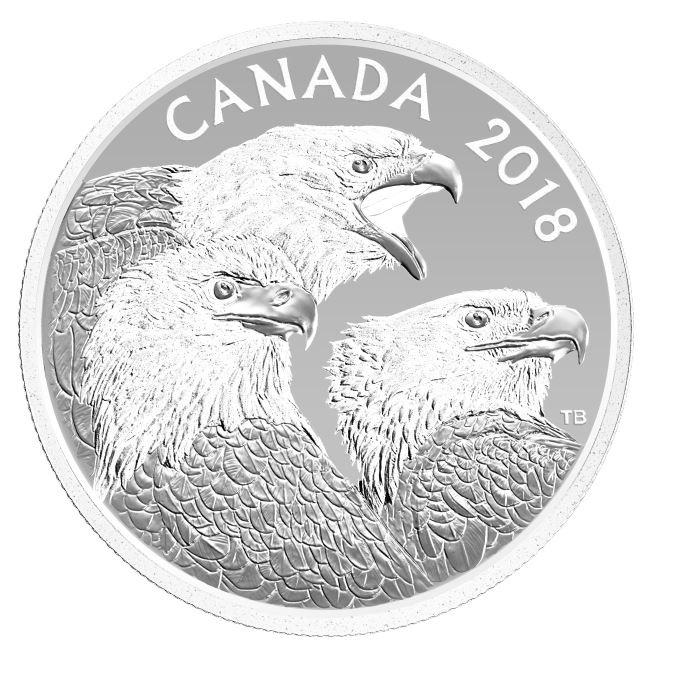 La pièce de 15 $ en argent fin 2018 – Magnifiques pygargues à tête blanche