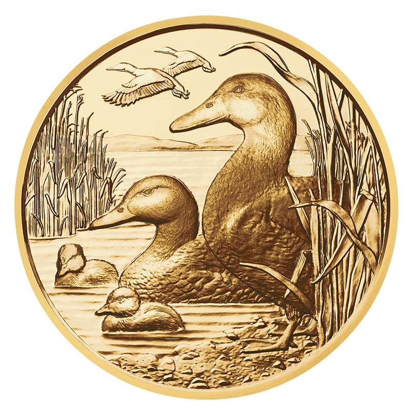 100€ Gold - The Mallard – Wildlife series - Austrian MINT 2018