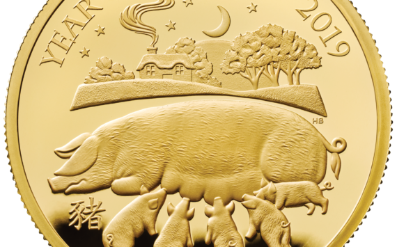 Commemorative coins for  2019 Lunar Year of the Pig struck by Royal Mint
